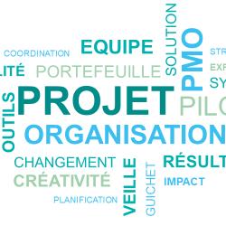 direction des projets et processus (DPP)