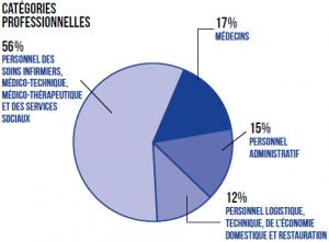 graphique - catégories professionnelles 2017