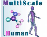 [img]Projet Européen Multiscale Human[/img]