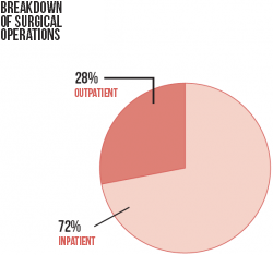 graphic - breakdown of surgical operations
