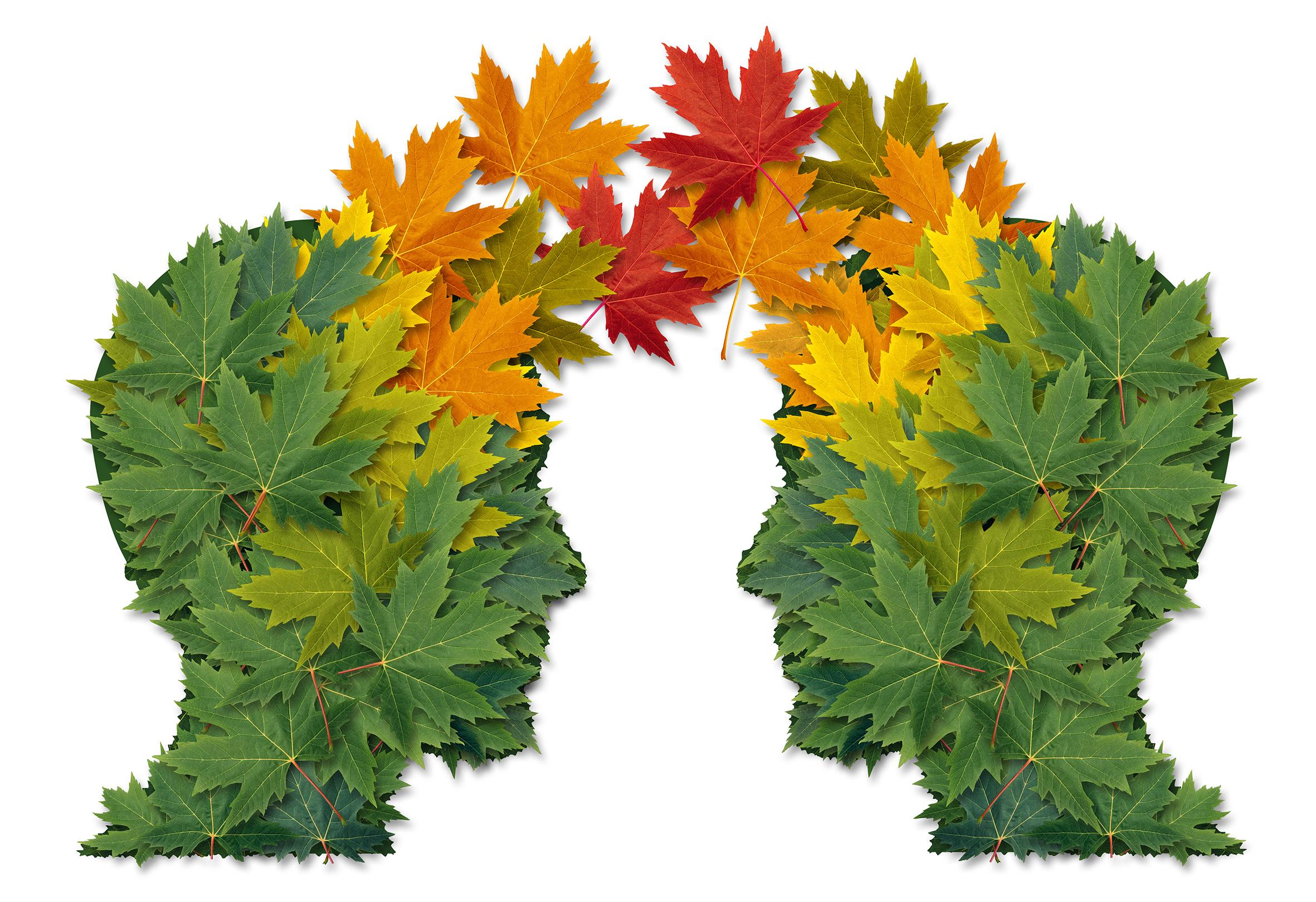 Le déclin cognitif subjectif : Alzheimer ou autre chose ?