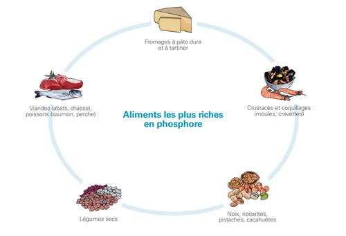 aliments-le-plus-riches-en-phosphore