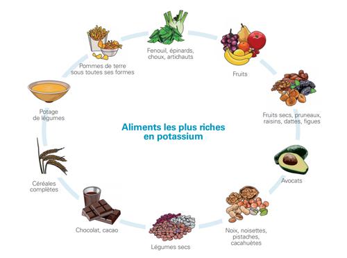 aliments-le-plus-riches-en-photassium