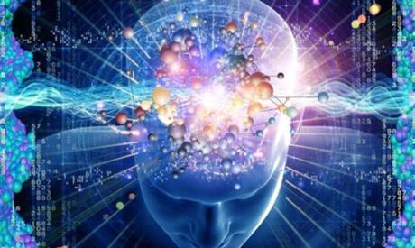Unité de neuropsychologie et neurologie comportementale