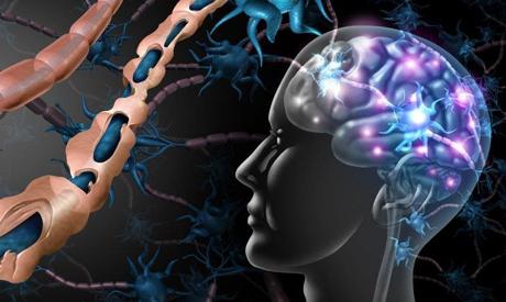 Unité des maladies neuromusculaires