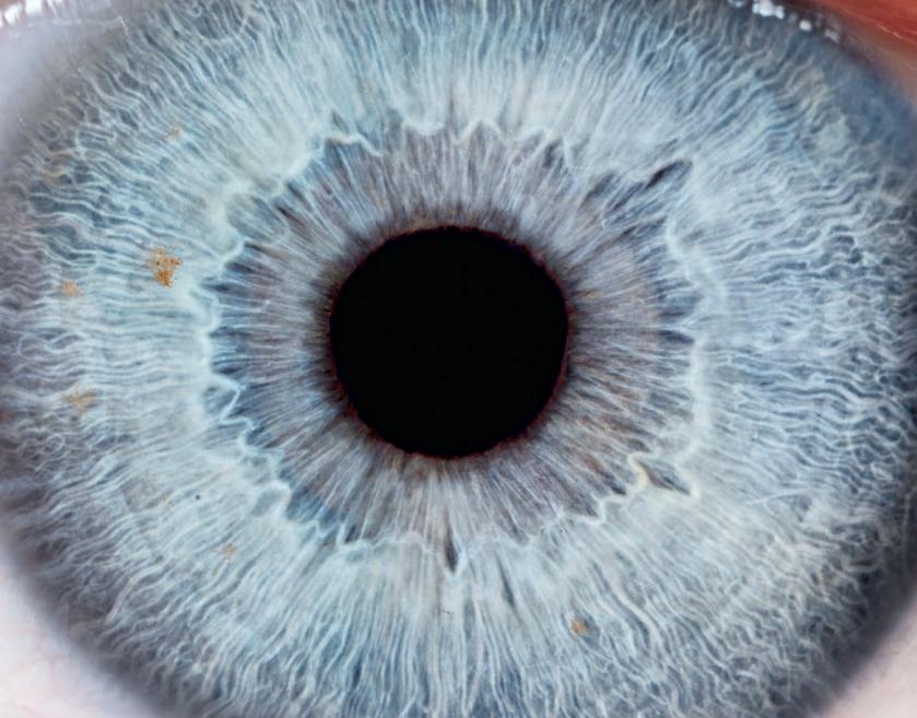 Brochure information patients - Les problèmes des voies lacrymales