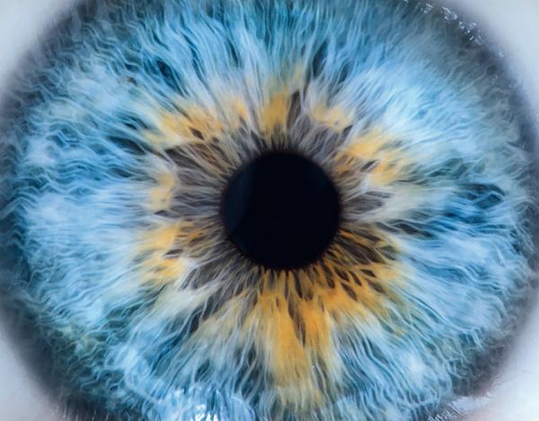 Brochure pour les patients : Organisation de vos traitements en ophtalmologie