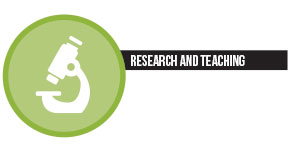 chiffres - research and teaching