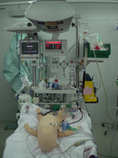 Photos de la journée de formation en Néonatologie et Soins Intensifs de Pédiatrie