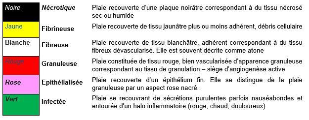 """""""caracteristique morphologiques d'une plaie"""""""